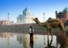 A Great view of Taja Mahal